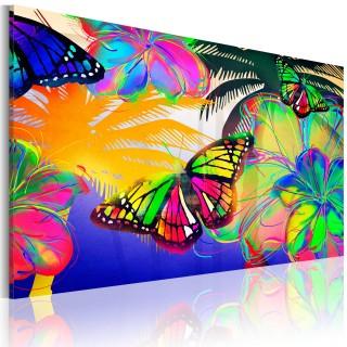 Πίνακας - Exotic butterflies