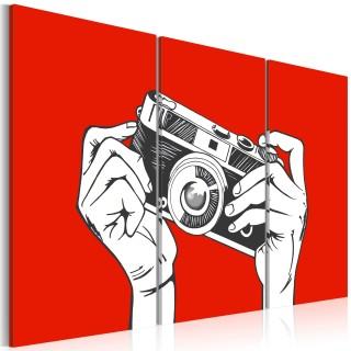 Πίνακας - A photographer