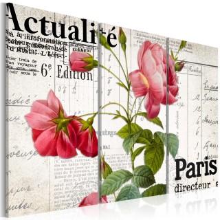 Πίνακας - Paris directeur