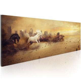 Πίνακας - City of stallions