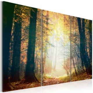 Πίνακας - Beauty of autumn - triptych