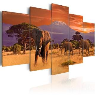 Πίνακας - Africa: Elephants
