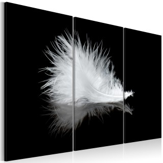Πίνακας - A small feather