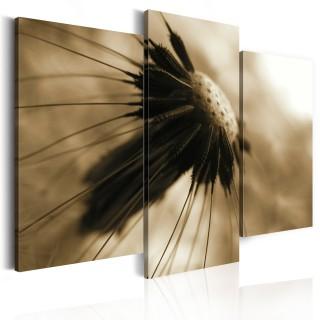 Πίνακας - A dandelion in sepia
