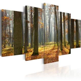 Πίνακας - A nice forest landscape