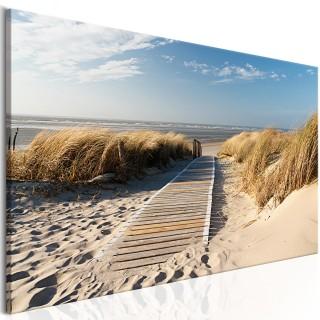 Πίνακας - Wild Beach
