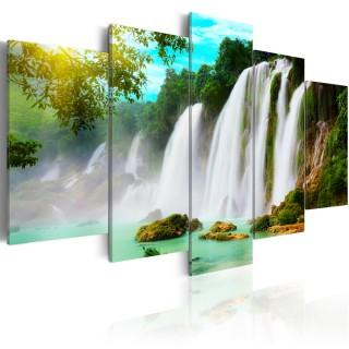 Πίνακας - Nature's miracle