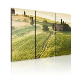 Πίνακας - Under the Tuscan Sun