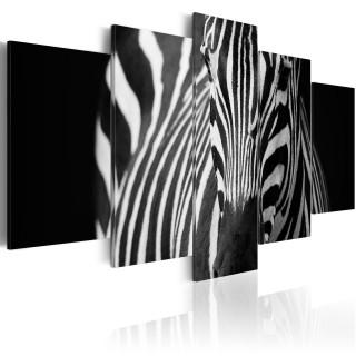 Πίνακας - Zebra look