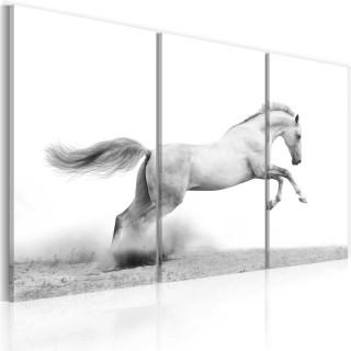 Πίνακας - A galloping horse