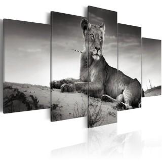 Πίνακας - Lioness in a desert