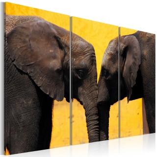 Πίνακας - Elephant kiss