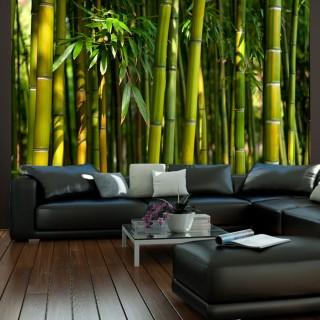 Φωτοταπετσαρία - Asian bamboo forest