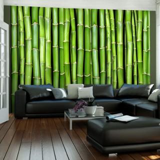 Φωτοταπετσαρία - Bamboo wall