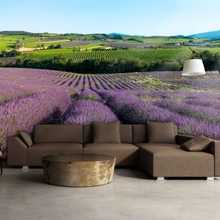 Φωτοταπετσαρία - Lavender fields