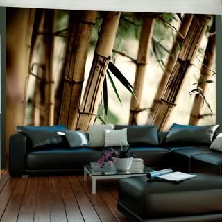 Φωτοταπετσαρία - Fog and bamboo forest