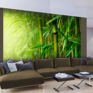 Φωτοταπετσαρία - jungle - bamboo