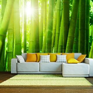 Φωτοταπετσαρία - Sun and bamboo
