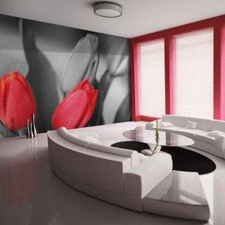 Φωτοταπετσαρία - Red tulips on black and white background