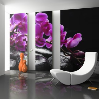 Φωτοταπετσαρία - Relaxing moment: orchid flower and stones