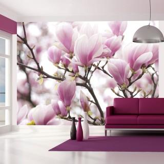 Φωτοταπετσαρία - Magnolia bloosom