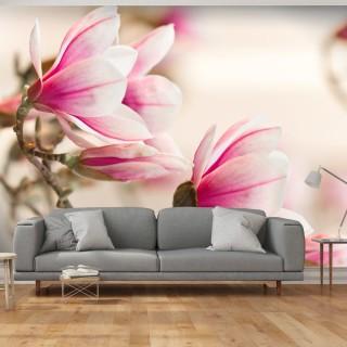 Φωτοταπετσαρία - Branch of magnolia tree