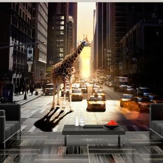 Φωτοταπετσαρία - Giraffe in the big city