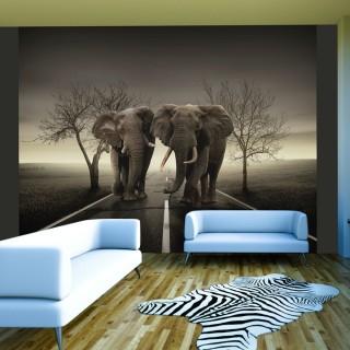 Φωτοταπετσαρία - City of elephants