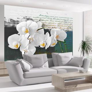 Φωτοταπετσαρία - Orchid - poet's inspiration