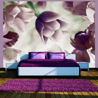 Φωτοταπετσαρία - Heavenly tulips
