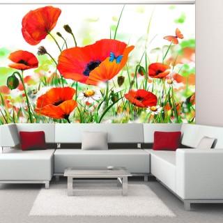 Φωτοταπετσαρία - Country poppies