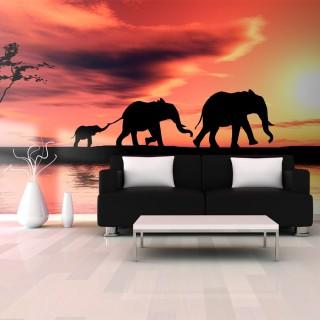 Ταπετσαρία XXL - elephants: family