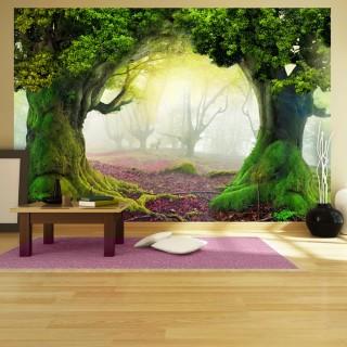 Φωτοταπετσαρία - Enchanted forest