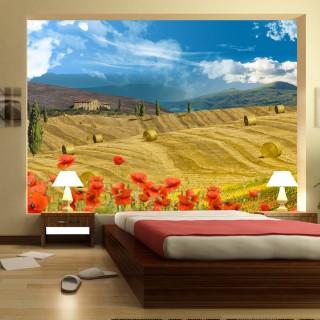 Φωτοταπετσαρία - Autumn landscape