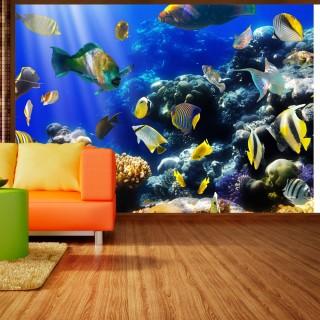 Φωτοταπετσαρία - Underwater adventure