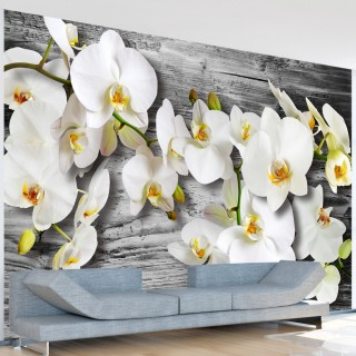 Φωτοταπετσαρία - Callous orchids III