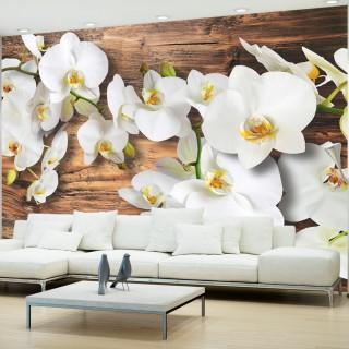 Φωτοταπετσαρία - Forest Orchid