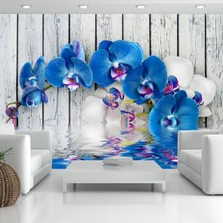 Φωτοταπετσαρία - Cobaltic orchid