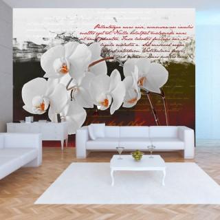 Φωτοταπετσαρία - Diary and orchid