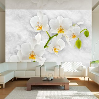 Φωτοταπετσαρία - Lyrical orchid - White