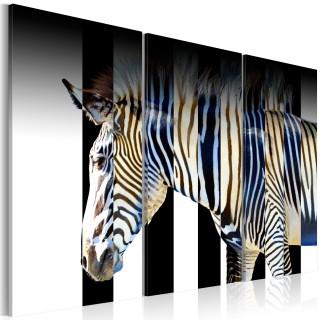 Πίνακας - Stripes