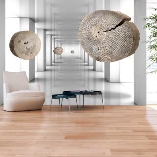 Φωτοταπετσαρία - Inventive Corridor