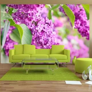 Φωτοταπετσαρία - Lilac flowers