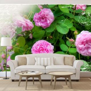 Φωτοταπετσαρία - Summer garden