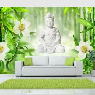 Φωτοταπετσαρία - Buddha and nature