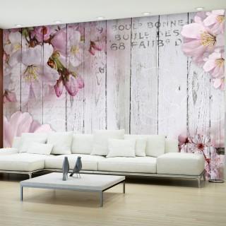 Φωτοταπετσαρία - Apple Blossoms