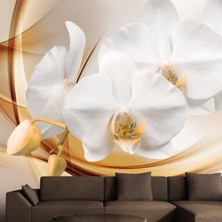 Φωτοταπετσαρία - Orchid blossom