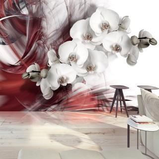 Φωτοταπετσαρία - Orchid in red