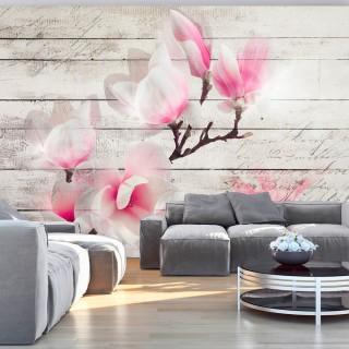 Φωτοταπετσαρία - Gentleness of the Magnolia