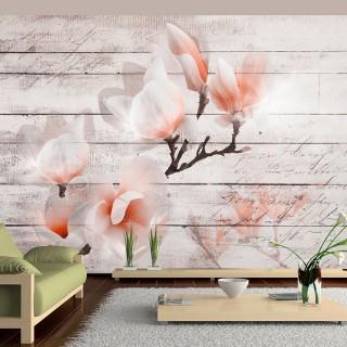 Φωτοταπετσαρία - Subtlety of the Magnolia